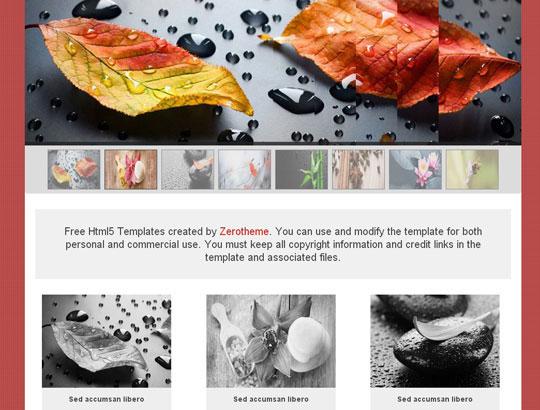42.free-html5-responsive-website-templates