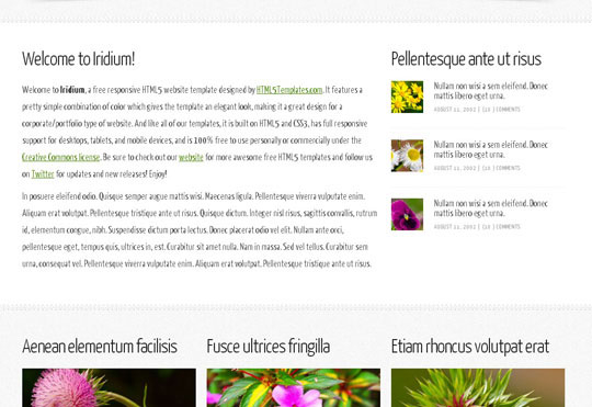 75.free-html5-responsive-website-templates
