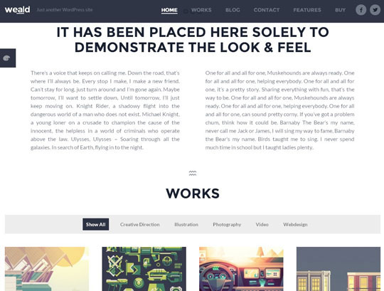 22.best portfolio wordpress themes