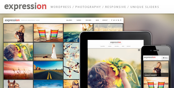 10.gallery wordpress theme