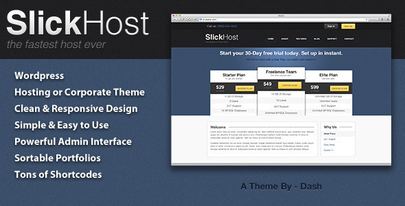11.hosting wordpress theme