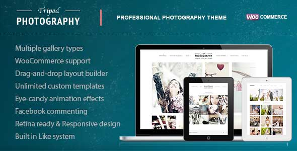 14.gallery wordpress theme