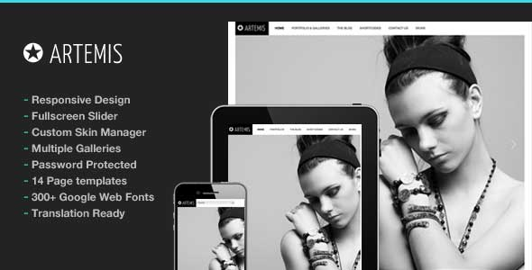 2.gallery wordpress theme
