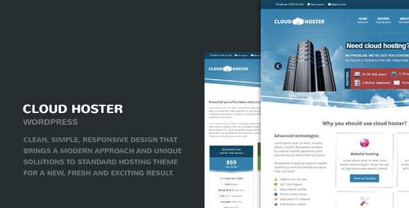 9.hosting wordpress theme