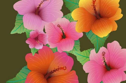 11.flower-vector1