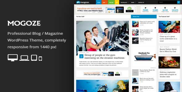 13.Wordpress news themes