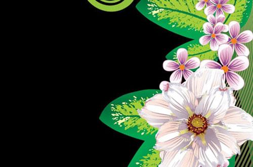 18.flower-vector1