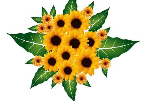 28.flower-vector1