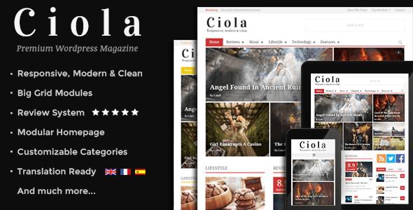 3.Wordpress news themes