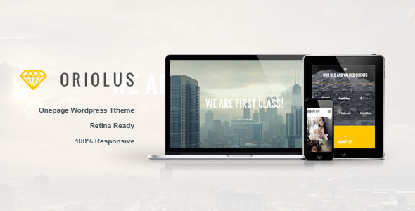 3.one page wordpress theme