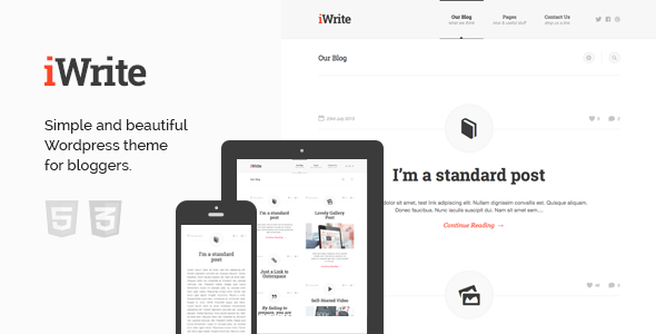 33.wordpress blogging theme