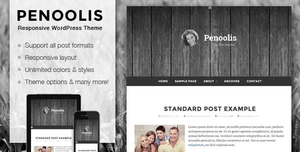37.wordpress blogging theme