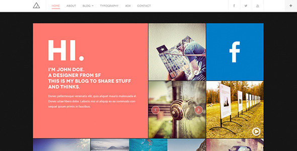 8.wordpress blogging theme
