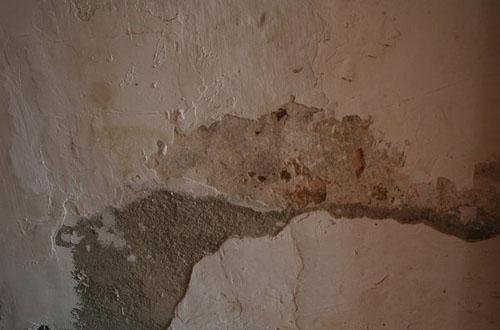 14.wall-texture