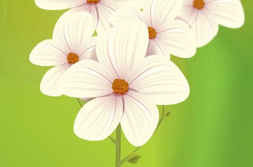 17.free-spring-vectors