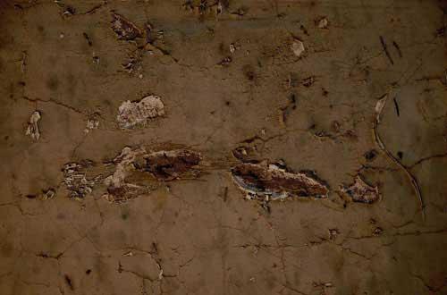 21.wall-texture