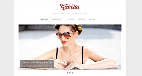 23.free and premium retro wordpress themes