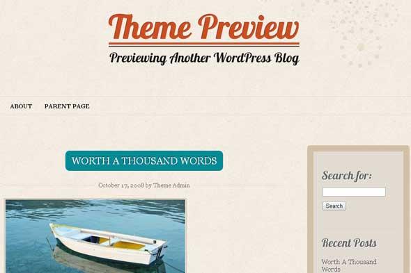 29.free and premium retro wordpress themes