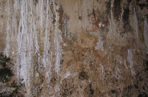 3.wall-texture
