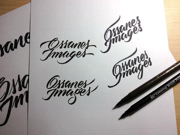 8.logo sketch