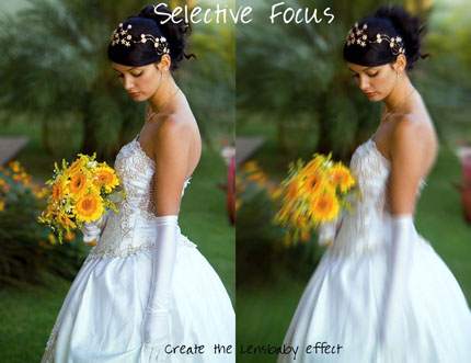 34.photoshop photo action