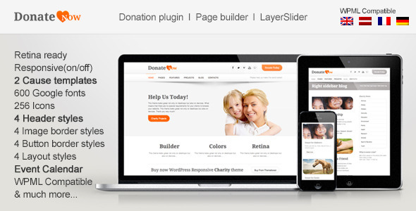 12.non profit wordpress themes