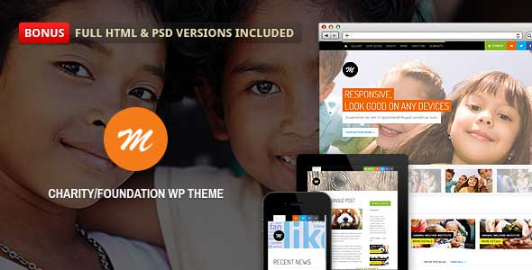 13.non profit wordpress themes