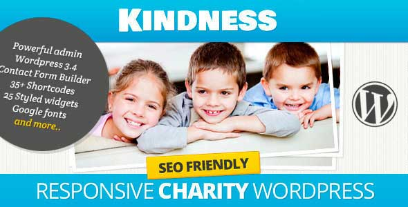 17.non profit wordpress themes