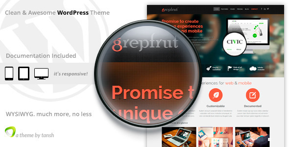 7.software wordpress themes
