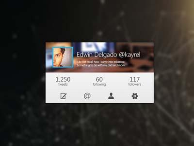 17.twitter-widget-ui