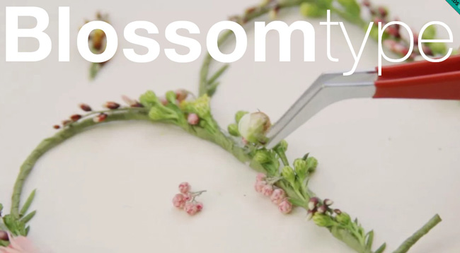 Blossomtype